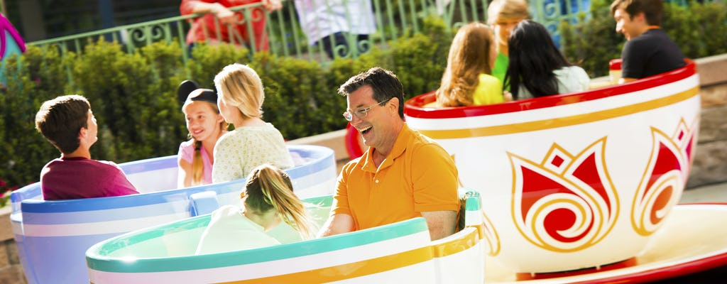 Entradas Park Hopper a los Parques Disneyland®