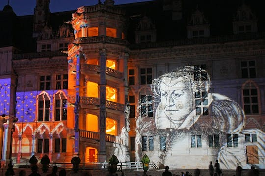 Skip-the-line ticket Château de Blois and Sound & Light show