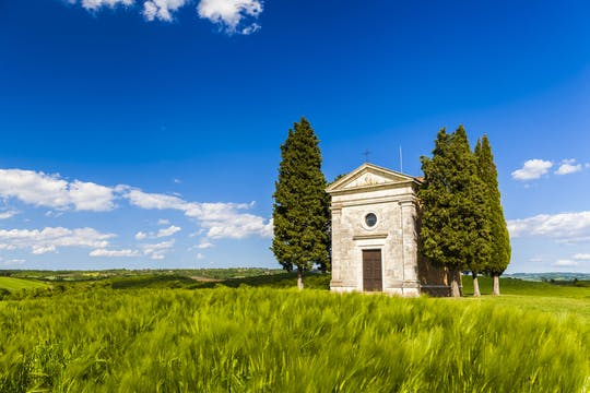 The ultimate foodie tour of Val d'Orcia from Florence