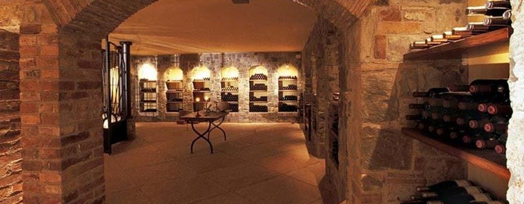 Visit to Tenuta Luisa Winery with wine tasting - Classic Tour