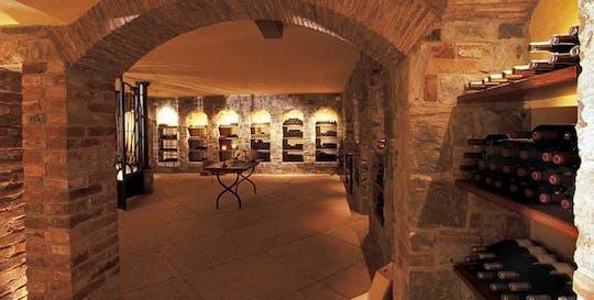 Визит в Tenuta Луиза винодельни с дегустацией вин - классический тур