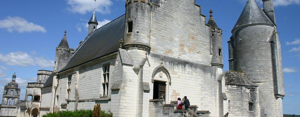 Boleto de entrada al Château de Loches
