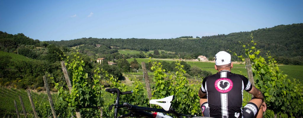 Tour in bici nella regione vinicola del Chianti classico