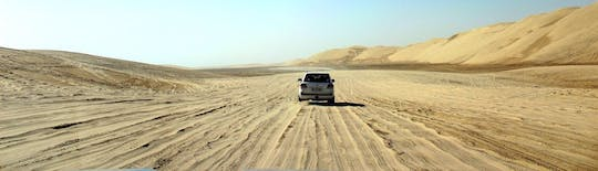 Full-day Desert Safari with BBQ & Souk Al Wakra Tour