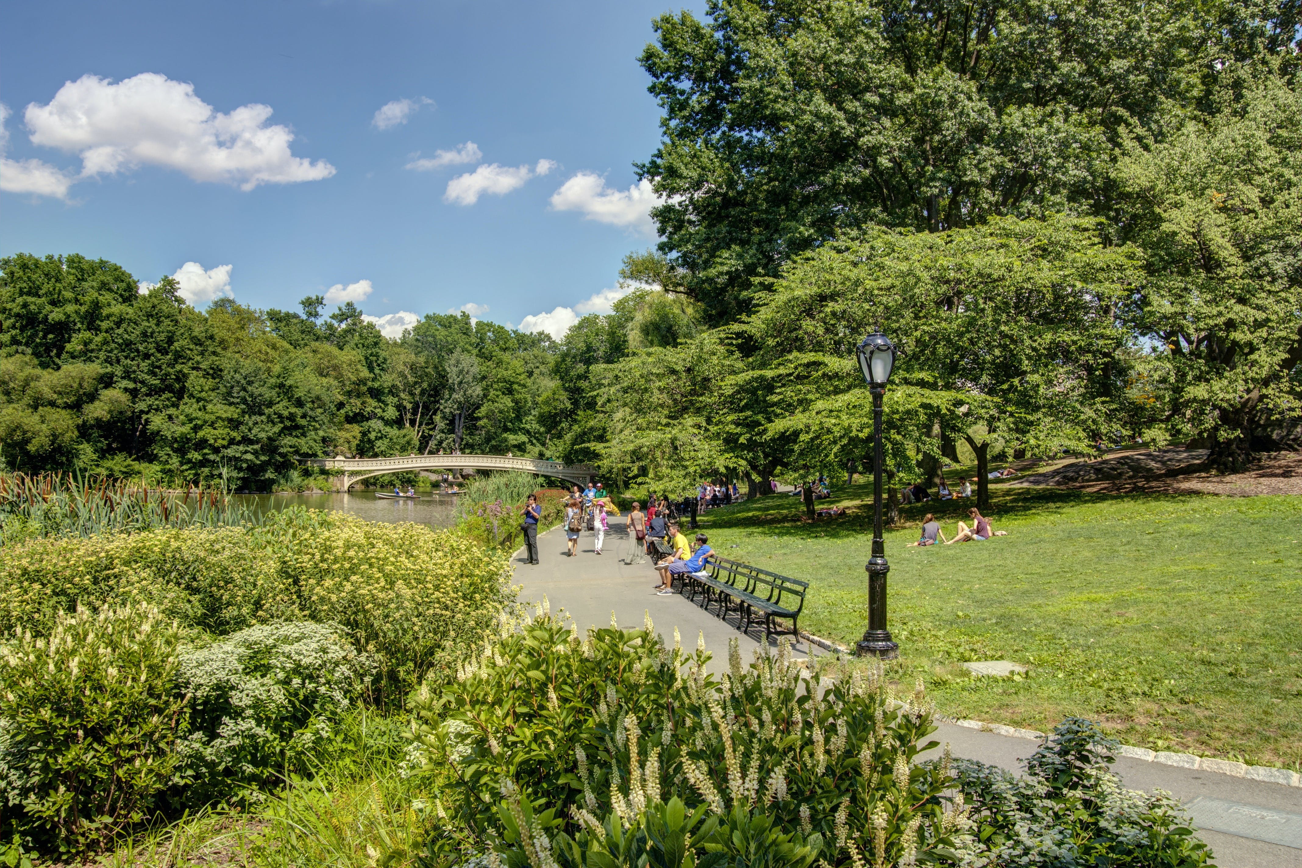 Central Park walking tour with Top of the Rock tickets