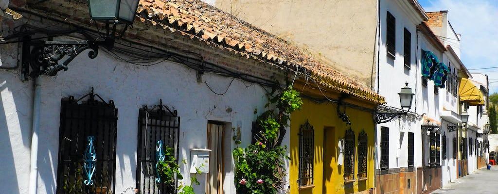 Visita guiada a Albaicín e Sacromonte