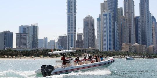 Visions of Dubai city tour with cruise and Dubai Frame