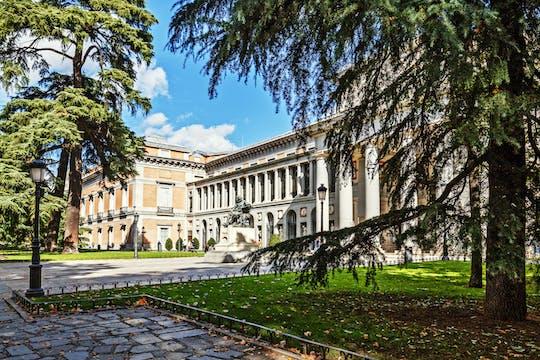 """Pass salta fila """"Paseo del Arte"""" per il Museo Nacional Thyssen Bornemisza, il Museo Reina Sofia e il Museo del Prado"""