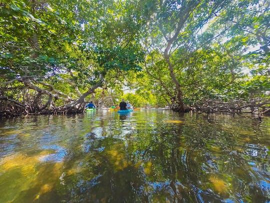 Excursión en kayak y navegación ecológica de día completo a Island 'Ting