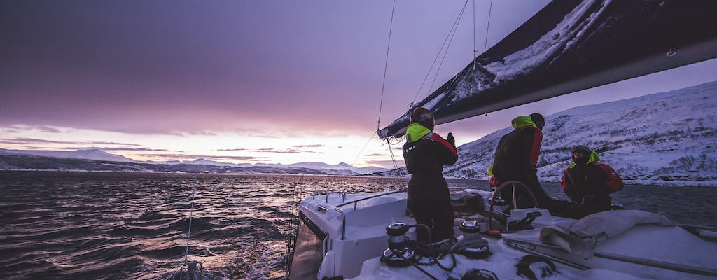 Arctic sail safari