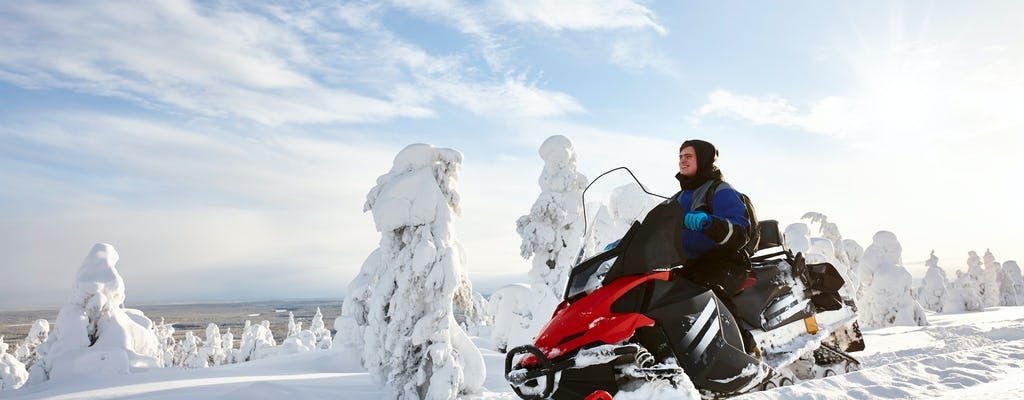 Full-day snowmobile safari in Arctic Circle forest