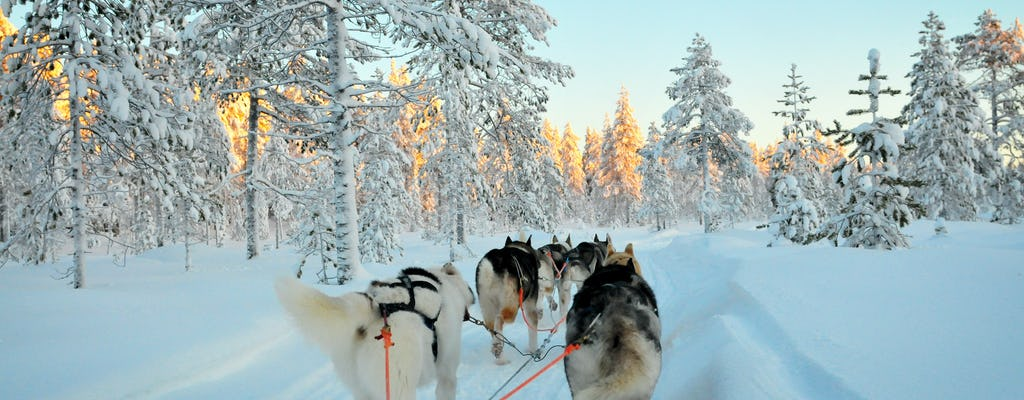 Ice fishing and husky experience in Lapland