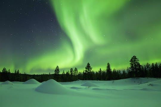 Noc reniferów i zorza polarna