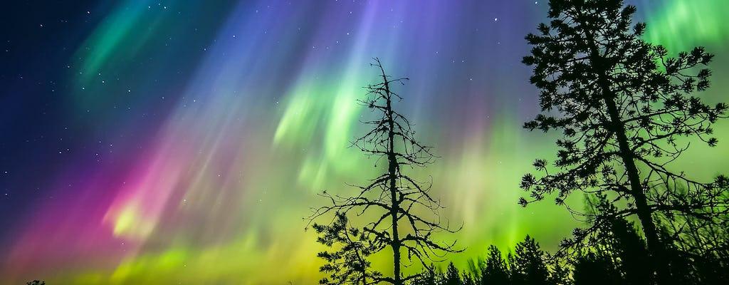 Sauna na brzegu jeziora z Aurora Borealis