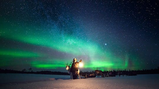 Reindeer Sami experience and northern lights