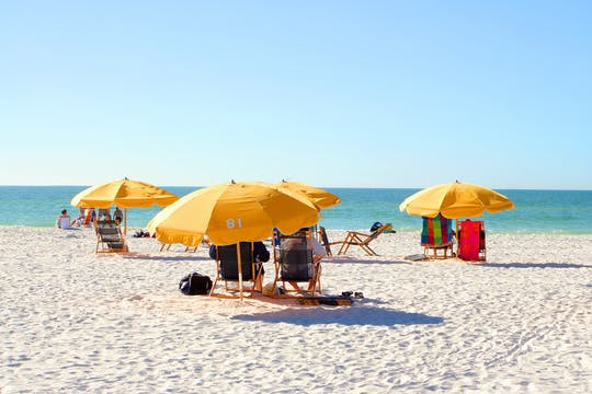 Clearwater Beach: transporte de ida e volta de Orlando com almoço