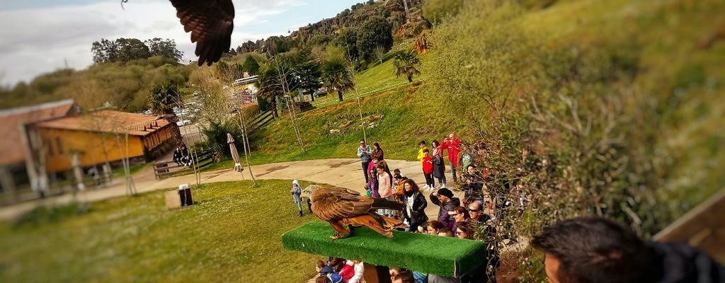 Cabarceno Natural Park tickets and guided tour from Santander