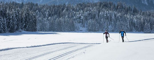 Lapland cross-country ski experience