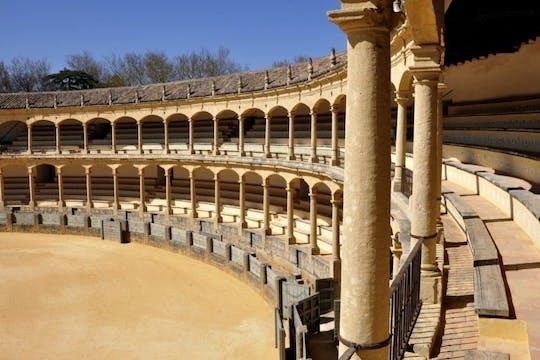 Andalusian bull breeding farm and Ronda private tour