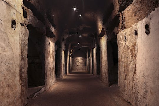 Tickets and guided tour of the Catacombs of San Gaudioso