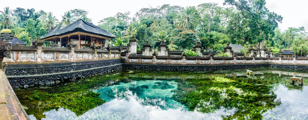 Bali traditional Ubud village sightseeing tour