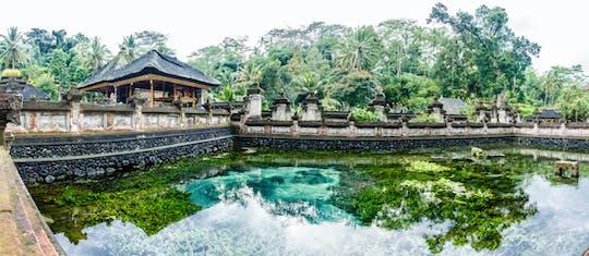 Бали традиционная деревня, обзорная экскурсия