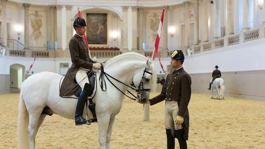 Обучение в Испанской школе верховой езды в Вене
