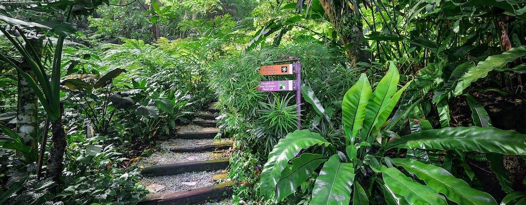 Tropikalna przyprawa Penang Garden Wstęp