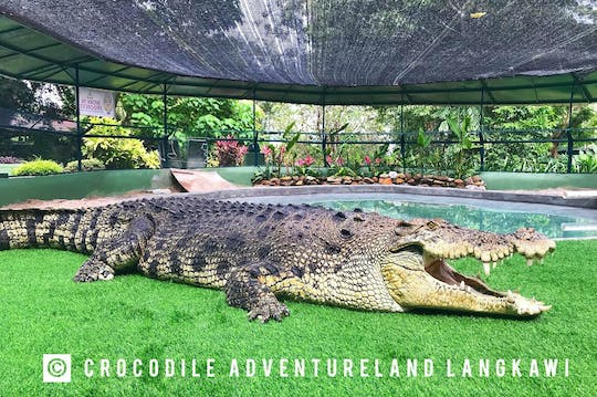 Crocodilo Adventureland Admissão E-Ticket