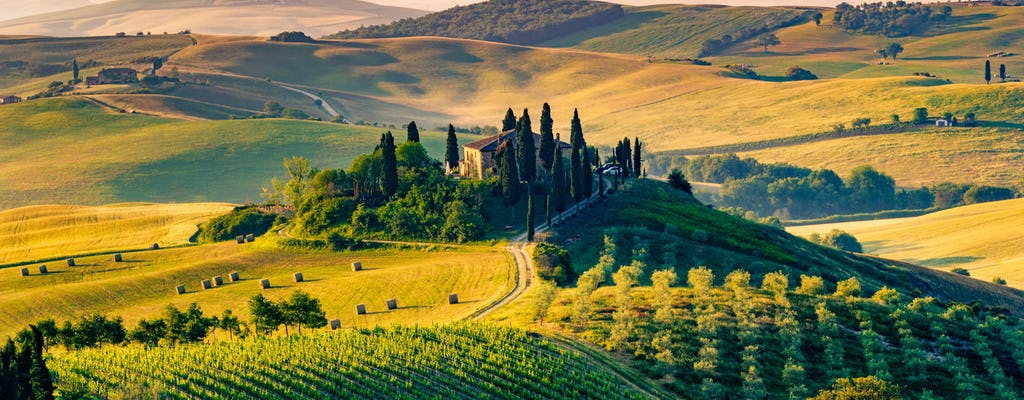 Food and Wine tour in the Tuscan countryside from Pisa