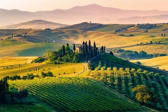 Tour enogastronomico nella campagna toscana da Pisa