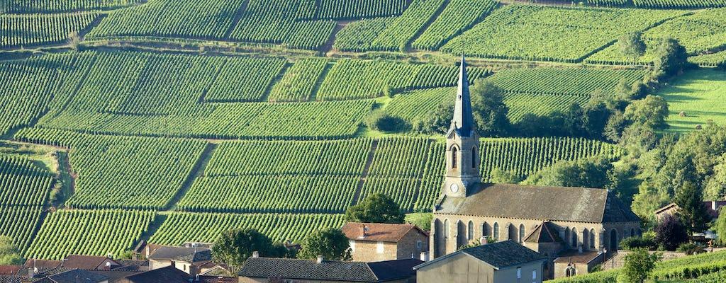 Tour unico del vino della Borgogna dal tuo hotel a Parigi