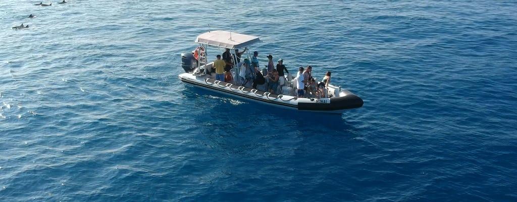 Hawaii barco de motor crucero y snorkeling