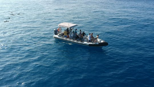 Hawaii motorboot cruise en snorkelen