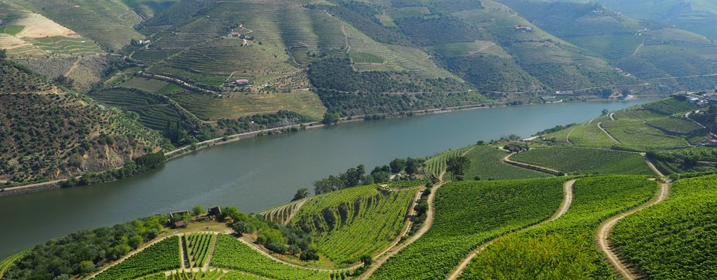 Expérience viticole premium dans la vallée du Douro