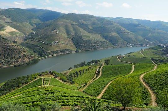 Douro Valley premium wine experience