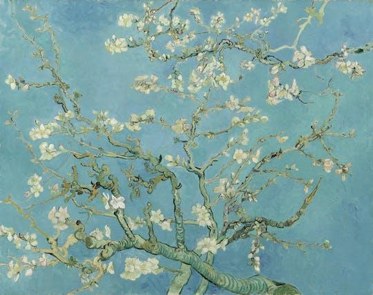 Entradas para o Museu Van Gogh e cruzeiro pelo canal de Amsterdã