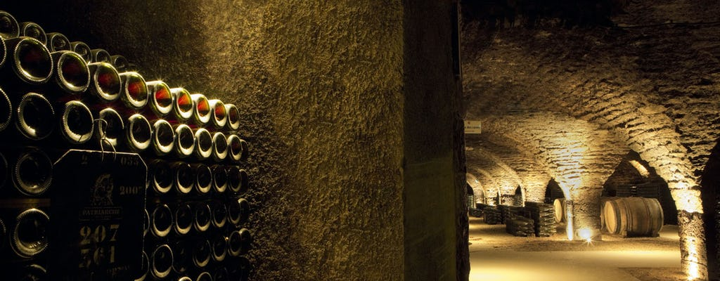 Wine-tasting in Cote de Nuits including a cellar guided tour