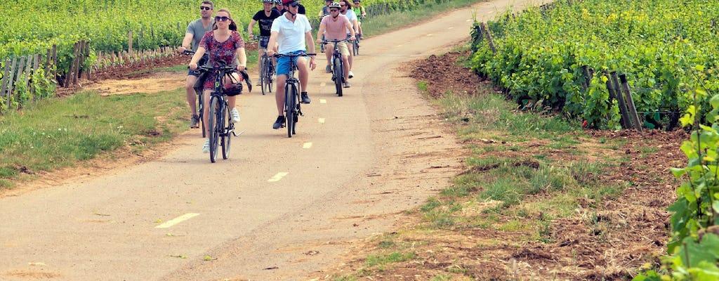 Tour guiado de 1 semana en la región vinícola de Borgoña