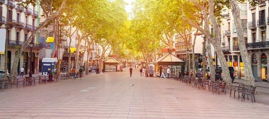 Tour privato del quartiere gotico di Barcellona con visita facoltativa del Museo Picasso
