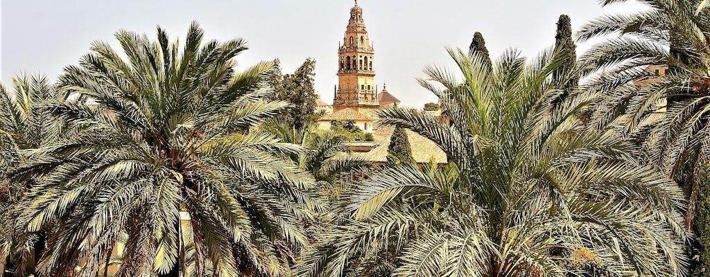 Wycieczka grupowa po Kordobie