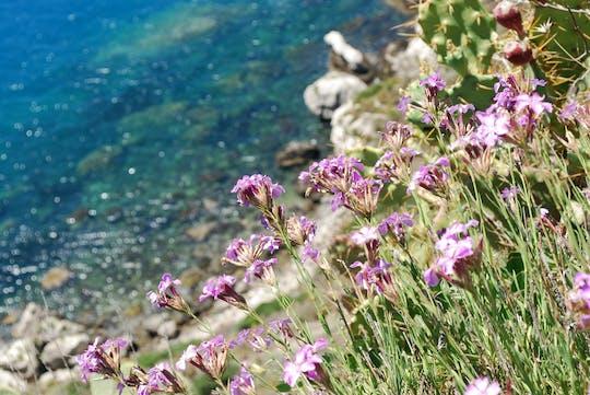 Weingut- und Strandtour ab Messina