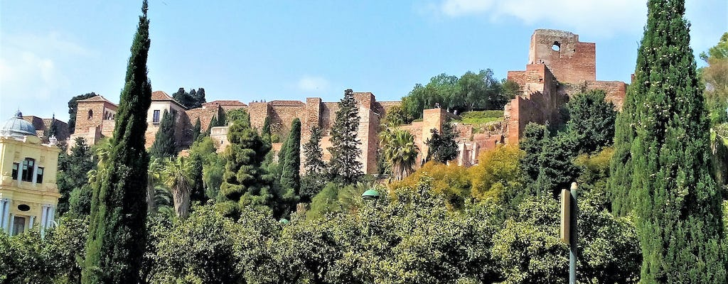 Malaga group walking tour
