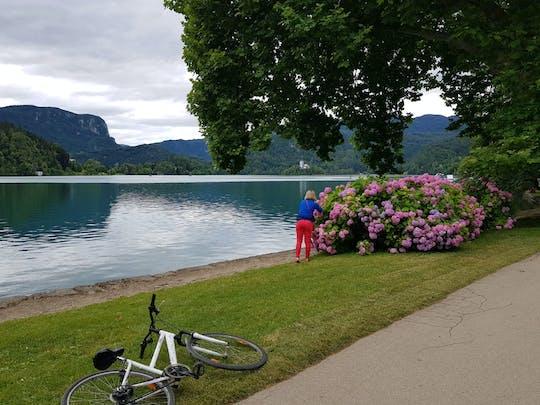 Tour per piccoli gruppi nell'incantevole Lubiana e sul lago di Bled da Zagabria