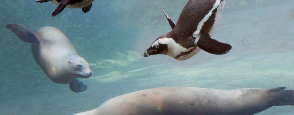 Biglietto salta fila per l'Artis Amsterdam Royal Zoo