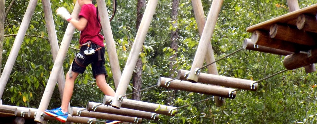 Bilety do Tree Trek Orlando