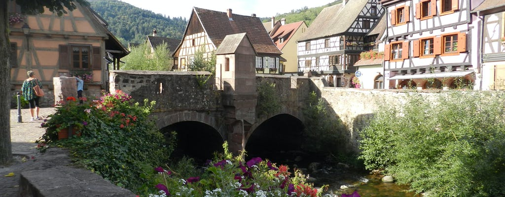 Alsace villages full day tour with wine tasting and workshop