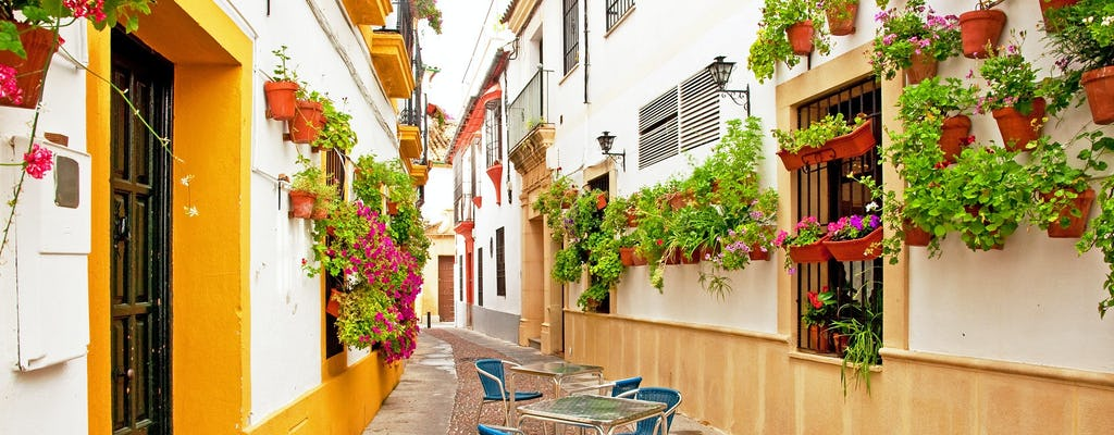 Cordoba guided walking tour
