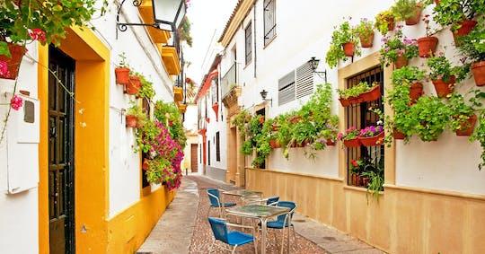 Visita guiada a pie por Córdoba