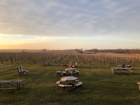 Wine tasting day trip from NYC